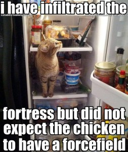 infiltrated fridge
