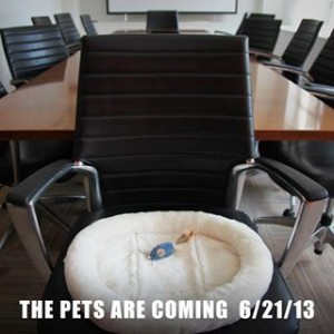 pets are coming